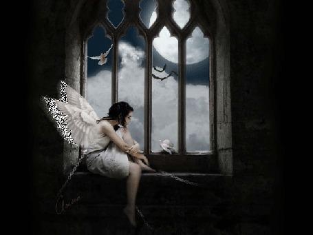 Фото Девушка ангел сидит на подоконнике, за окном летают птицы