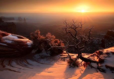 ���� ������� ������������ ���� �����������, ���� ��� Golden Light Overlook, by Kane Engelbert (� zmeiy), ���������: 21.01.2015 19:16