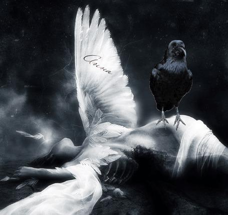 Фото Девушка ангел лежит распростерши крылья, на ней сидит ворон