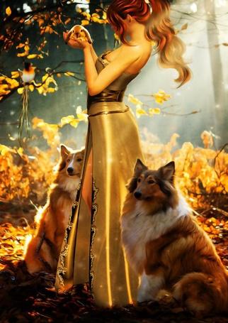 Фото Девушка, стоя в лесу, держит в руках кролика, возле нее сидят собаки породы колли, на веточке сидит птица, by Cellest84