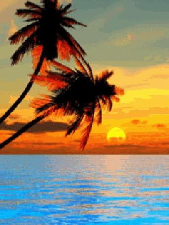 Фото Море на фоне заката