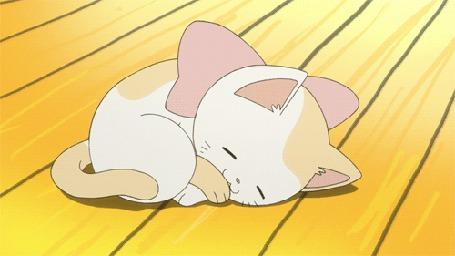 Фото Спящий котенок с бантом не шее