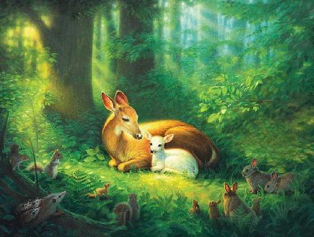 Фото Олени лежат на поляне в лесу, вокруг них столпились животные