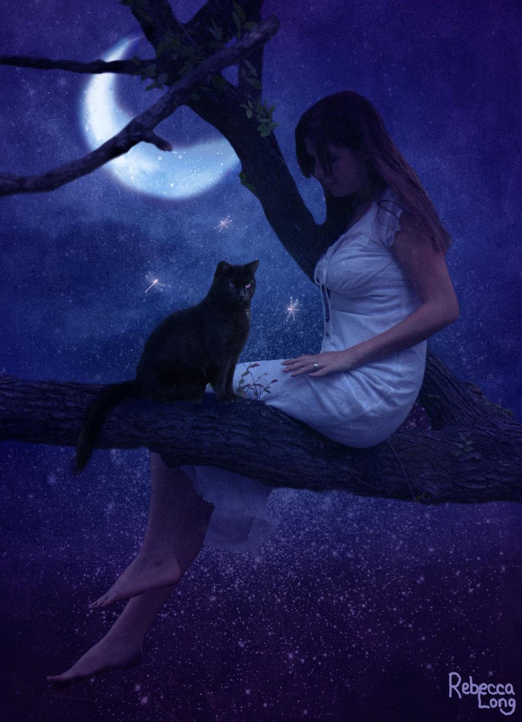 жизни, ведьма с кошкой фото качестве