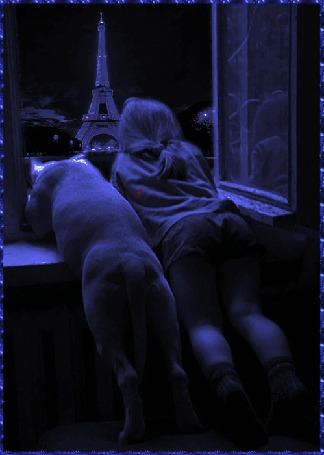 Фото Девочка и собака смотрят в окно на ночной город