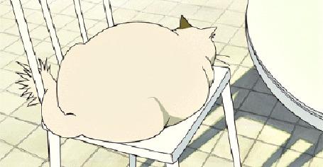 Фото Кот лежит на стуле и медленно поворачивает голову, кадр из аниме Neko no Ongaeshi / Возвращение кота
