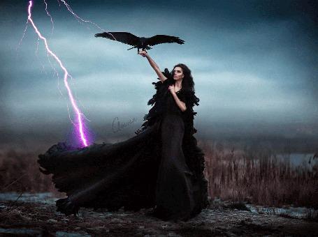 Фото Девушка в поле на руке ворон, сверкает молния