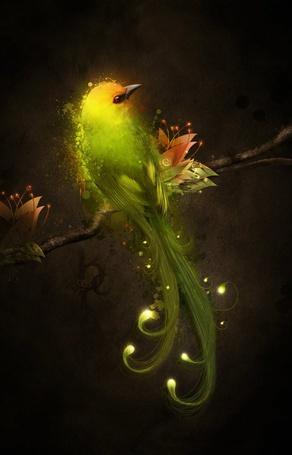 Фото Красивая птица сидит на ветке цветущего дерева