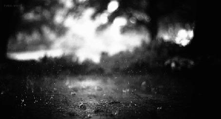 Фото Капли дождя, падающие на дорогу