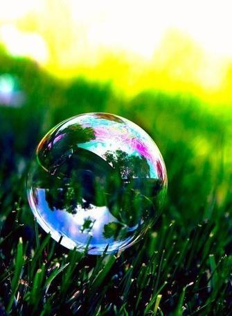 Фото Мыльный пузырь лежит на траве, автор AmelieHope