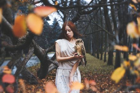 Фото Девушка с третьим глазом во лбу, на руке которой сидит сова
