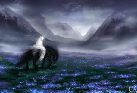 Фото Черная лошадь с фантомом девушки идет по полю с цветами среди затуманенных гор