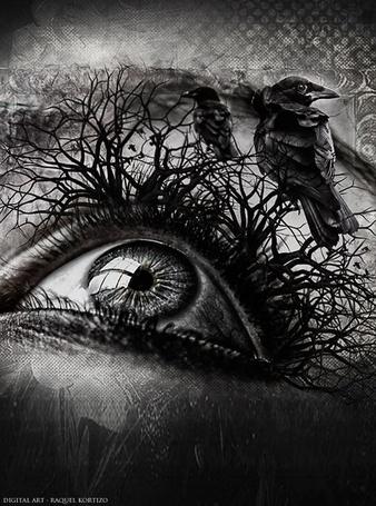 Фото На ресницах девушки, в виде веток деревьев, сидят вороны, by RaquelKortizo