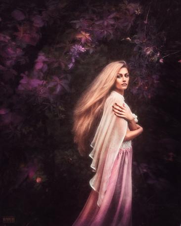 Фото Девушка в белой накидке стоит возле розовой листвы дерева, автор Светлана Беляева
