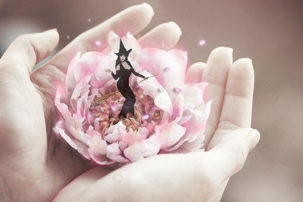 Фото Лотос в руках т голограмма ведьмочки на метле