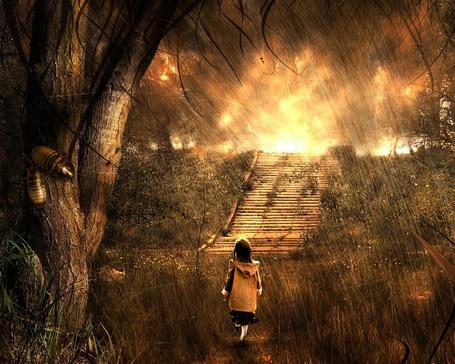 Фото Девочка под проливным дождем среди травы, идет к лестнице, за которой сквозь тучи пробивается солнце