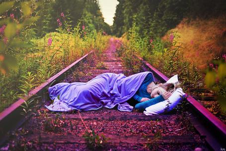 Фото Девушка, укрывшись одеялом, спит на рельсах, которые заросли травой и цветами