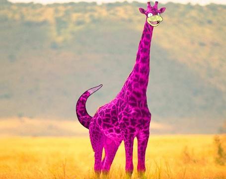Фото Жираф в образе покемона