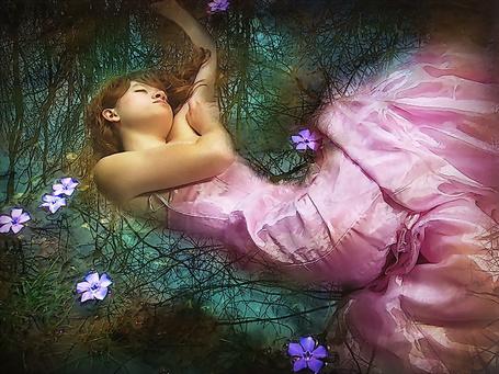 Фото Девушка в длинном розовом платье с закрытыми глазами, лежит спиной на воде с цветами на поверхности и отражаемыми сухими ветками деревьев
