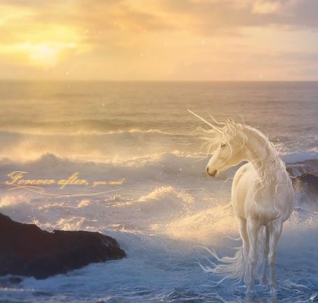 Фото Единорог стоит в воде, by xDjurax