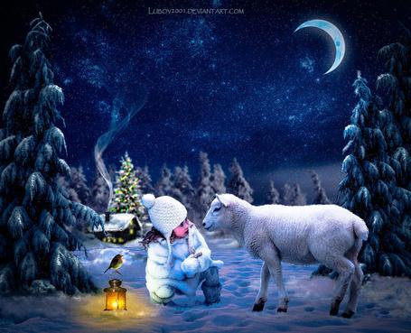 Фото Милая девочка в белой, вязаной шапочке и меховой шубке, сидящая на корточках перед белым ягненком на заснеженной поляне невдалеке от домика с вьющимся из трубы дымком, наряженной новогодней елки на фоне ночного, звездного неба и святящегося полумесяца, рядом с девочкой стоит горящий фонарь с сидящей на ручке птичкой, автор Lubov 2001
