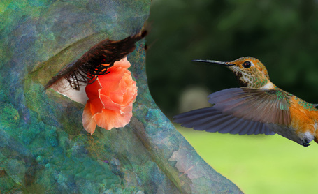 Фото Глаз девушки с цветком и перед ним птица, by TalesOfNightWing