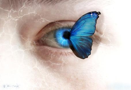 Фото У глаза девушки крыло бабочки, by TalesOfNightWing