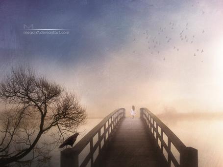 Фото Темноволосая девочка в длинном, белом платье, идущая по деревянному мосту с сидящим на перилах черным вороном, проложенном через реку с густым туманом на противоположном берегу на фоне пасмурного неба и парящей в воздухе стаи птиц, автор Megan 7