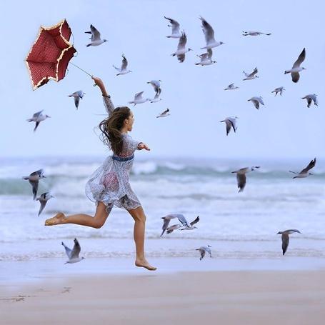 Фото Девушка с зонтом бежит по берегу в сопровождении чаек