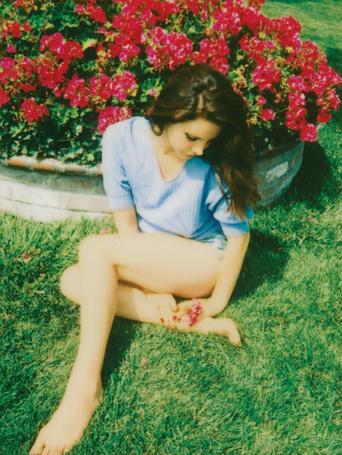 ���� ���� ���� ��� / Lana Del Rey (� alice_ackerman), ���������: 27.03.2015 00:42