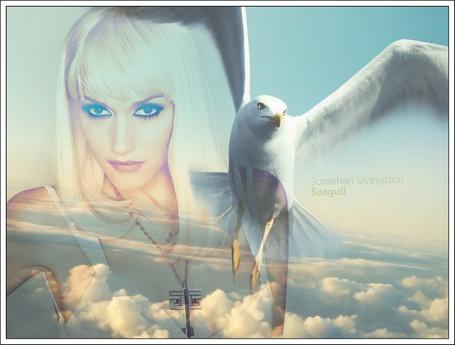 Фото Гвен Стефани из группы ноу даубт на фоне облаков и чайки, иллюстрация к книге Ричарда Баха - Чайка по имени Джонатан Ливингстон