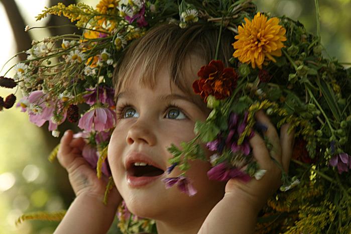 Посадить лилию в августе