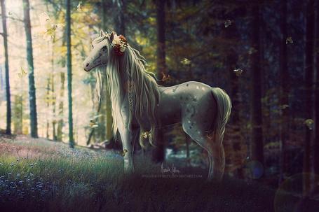 ���� ������ � ������ �� ������ � �����, ����� � ������ ���� �� ���� �������� �������, � ������ �� ����������� � ��� �����, by Frostie-Spirits (� Angelique), ���������: 04.04.2015 00:25