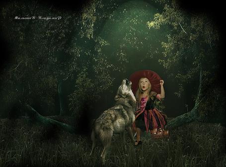 Фото В темном лесу девочка и волк подвывают на луну