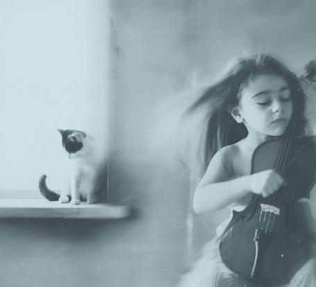Фото Девочка, держащая скрипку, сидит на стуле рядом с окном, на котором сидит маленький котенок