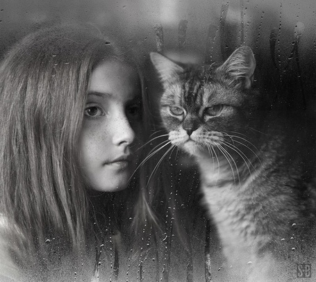 Фото Девочка и кот за стеклом в каплях дождя