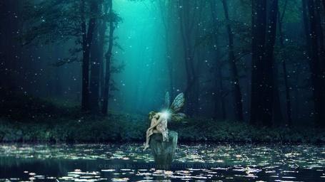 Фото Девушка с крылышками сидит посреди воды, покрытой цветущими лотосами, by RazielMB