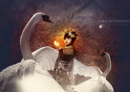 Фото Девочка восточной внешности одетая в кимоно, в окружении белых лебедей, держит над ладонью сияющее перо, By Sheishido