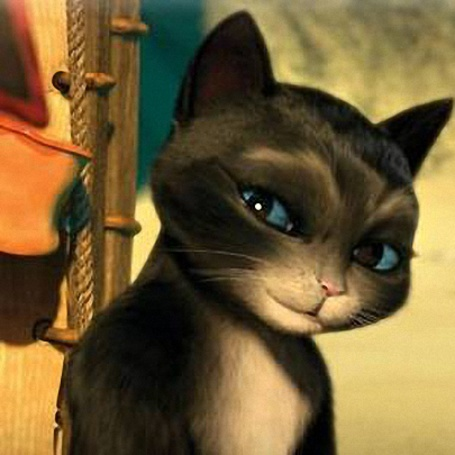 Фото Кот с голубыми глазами, персонаж мультфильма Кот в сапогах