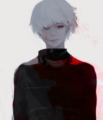 ���� Ken Kaneki / ��� ������ �� ����� Tokyo Ghoul / ��������� ���� (� chucha), ���������: 23.04.2015 00:16