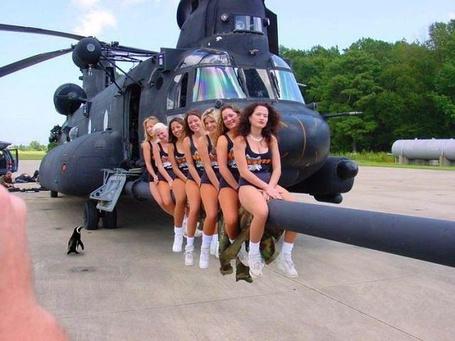 Фото Девушки пристроились на вертолете, а пингвину места не хватило