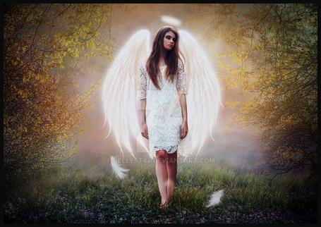 Фото Девушка-ангел стоит в траве, работа Cellest84