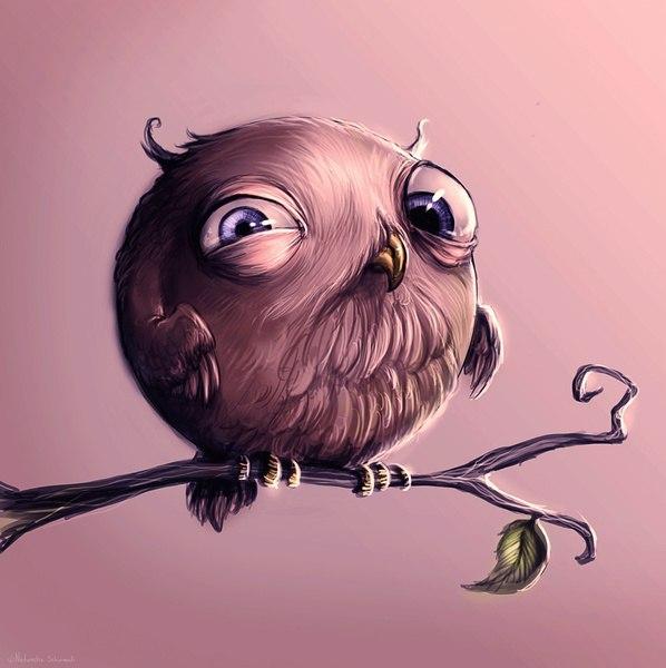 Новый, смешные рисунки совы