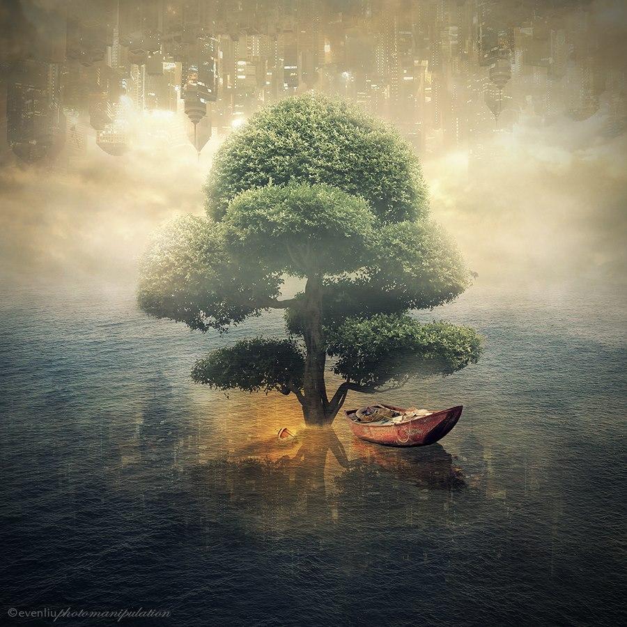 Вверх на дерево