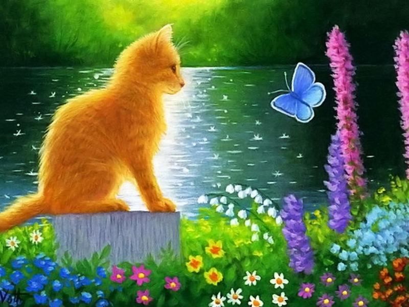 Картины бабочки и кошка