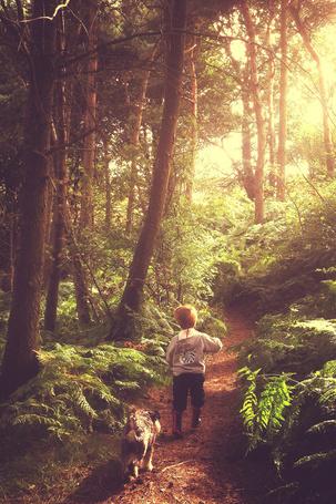 Фото Мальчик с собакой идет по тропинке в лесу