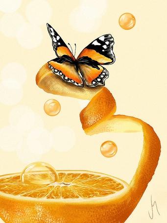 ���� ������� ����� �� ��������� ������ ���������, ��������� Veronica Minozzi (� Akela), ���������: 03.05.2015 02:34