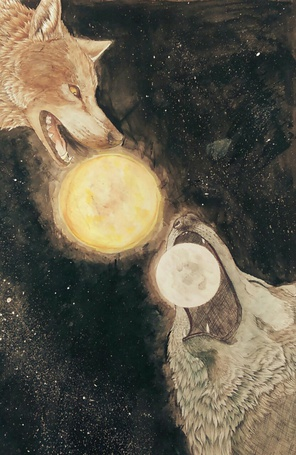 Фото Два волка, перед мордой у одного луна, а у другого солнце