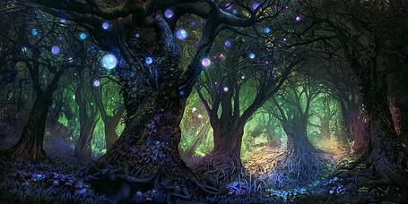 Фото Волшебный лес с летающими светящимися шариками