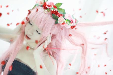 ���� ������� Vocaloid Megurine Luka / �������� �������� ���� (� chucha), ���������: 06.05.2015 00:06